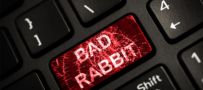 What do we know about bad rabbit